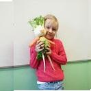 http://www.dobraszkola.edu.pl/gfx/photos/offer_185/wiosna.jpg